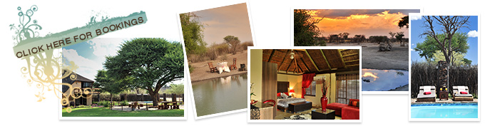 hunting bookings and enquires
